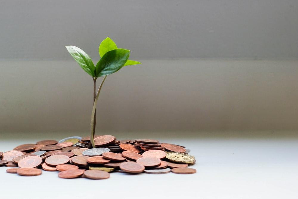 債務整理とは?手順や費用など基礎からわかりやすく解説!